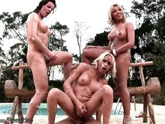 frisky shegirls cover each other bodies with whipped cream