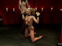 Skinny blonde babe is tied up by mature brown haired woman. Maitresse Maideline enjoys hanging elect