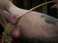 his swollen balls are tied and ready to burst